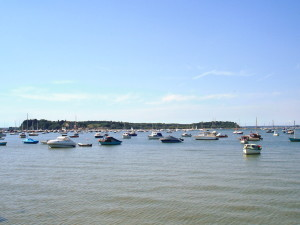 Brownsea Island in augustus 2007