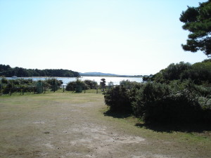 BP's kampterrein van 1907 op Brownsea Island - 100 jaar na dato in augustus 2007