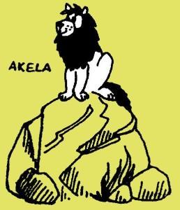 Akela op de raadsrots