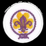 Het installatieteken van Scouting Nederland en het oude logo