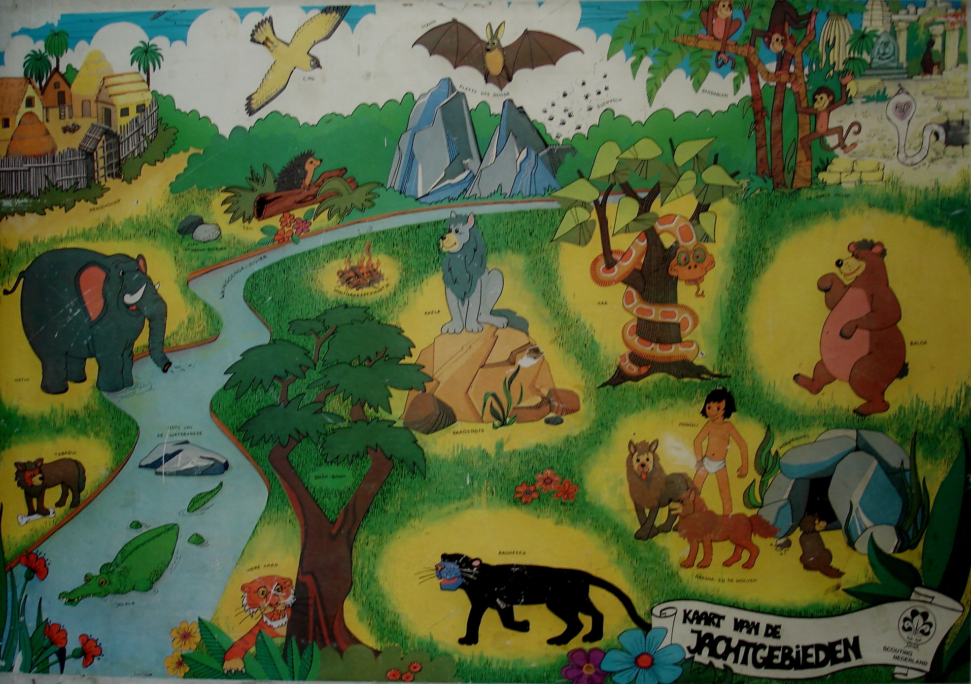 De kaart van de jungle