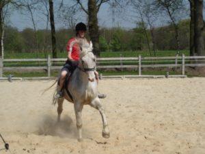 Bevers Knollenhoeve Stalhouderij Schouwink 2007