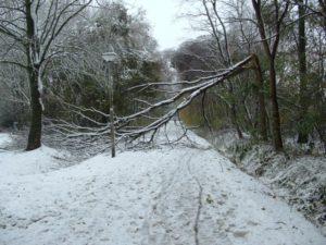 Sneeuw overlast 2005